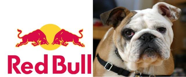 bulldog.redbull